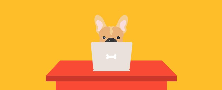 dog at computer
