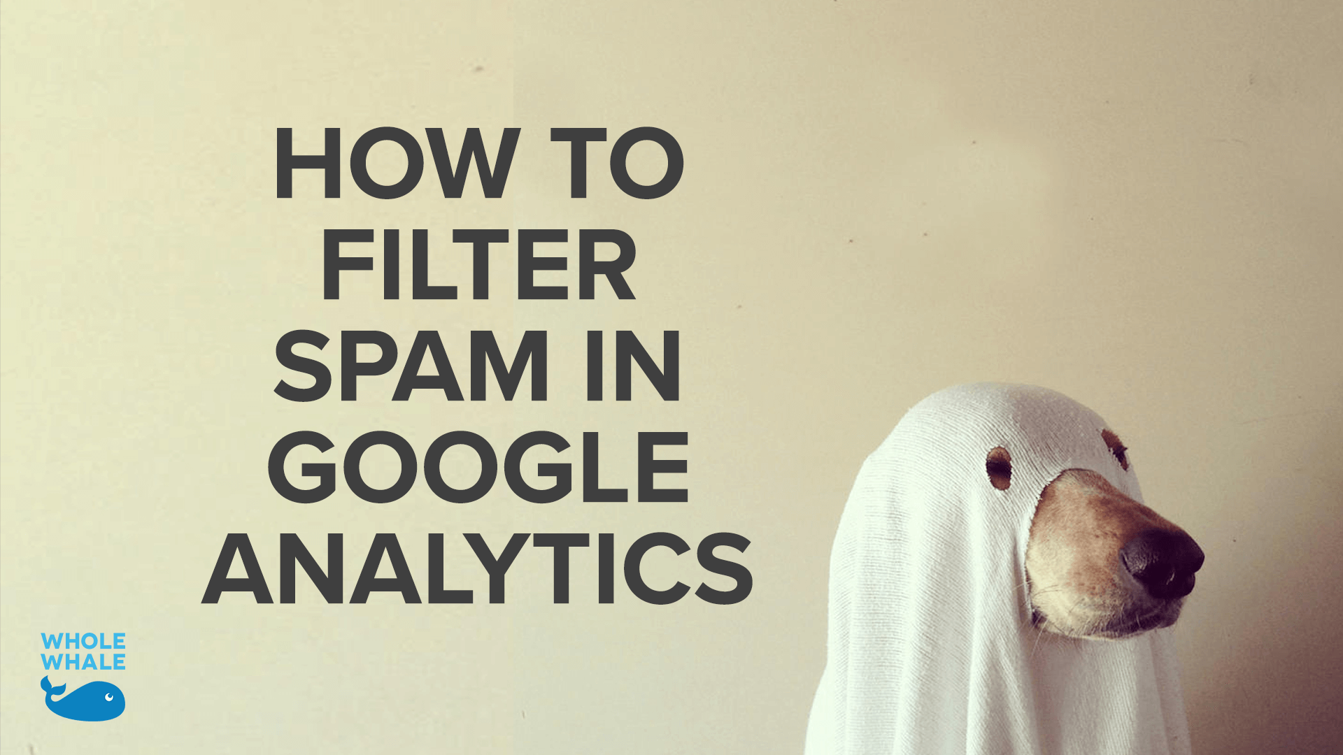 Simple Guide to Filtering Spam in Google Analytics