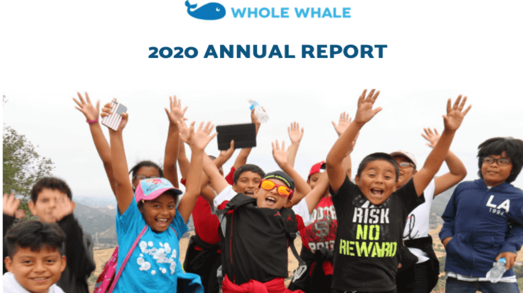 2020 nonprofit annual report template