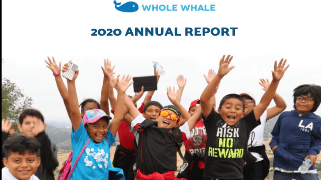 2020 nonprofit annual report template
