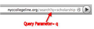 What is a Query Parameter?